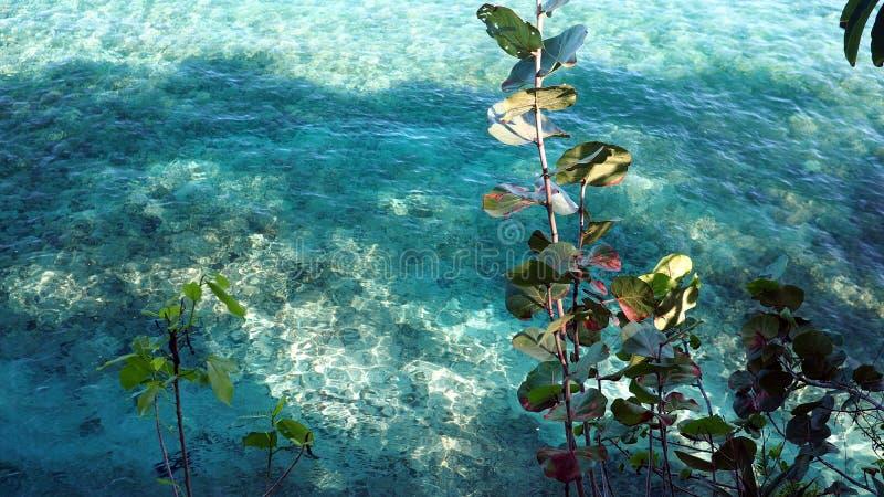 Παραλία Sosua στοκ φωτογραφία με δικαίωμα ελεύθερης χρήσης