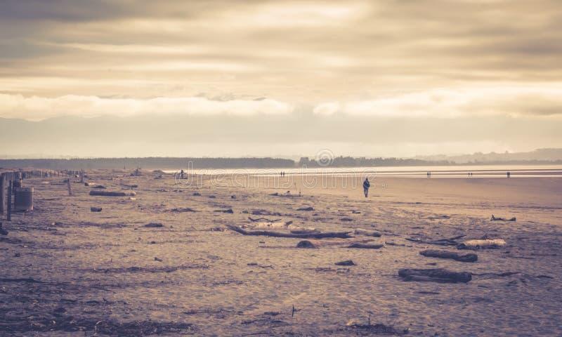 Παραλία Tahunanui, Nelson, Νέα Ζηλανδία στοκ φωτογραφία με δικαίωμα ελεύθερης χρήσης
