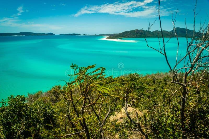 Παραλία Whitehaven στο Whitsundays, τον τυρκουάζ ωκεανό και τους φραγμούς άμμου στοκ εικόνες
