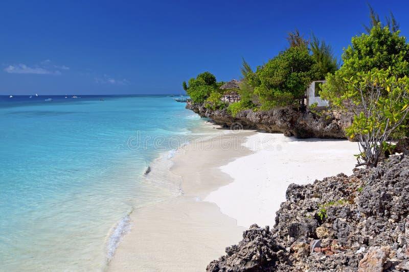 Παραλία Zanzibar στοκ εικόνα με δικαίωμα ελεύθερης χρήσης