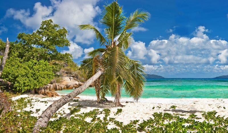 παραλίες Σεϋχέλλες στοκ εικόνες με δικαίωμα ελεύθερης χρήσης