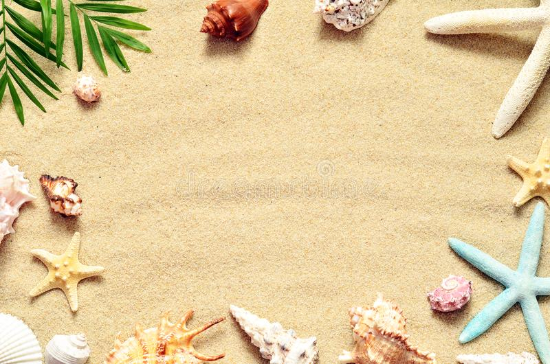 παραλιών ακτών θερινή κυματωγή πετρών άμμου της Κύπρου μεσογειακή Αστερίας και θαλασσινό κοχύλι στην άμμο στοκ φωτογραφία