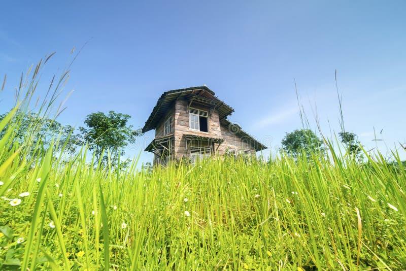 Παραμελημένο ξύλινο σπίτι στην ερείπωση στοκ φωτογραφίες