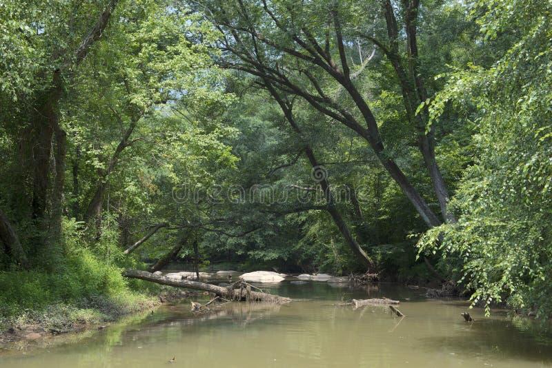 Παραπόταμος του ποταμού Chattahoochee στοκ εικόνες με δικαίωμα ελεύθερης χρήσης