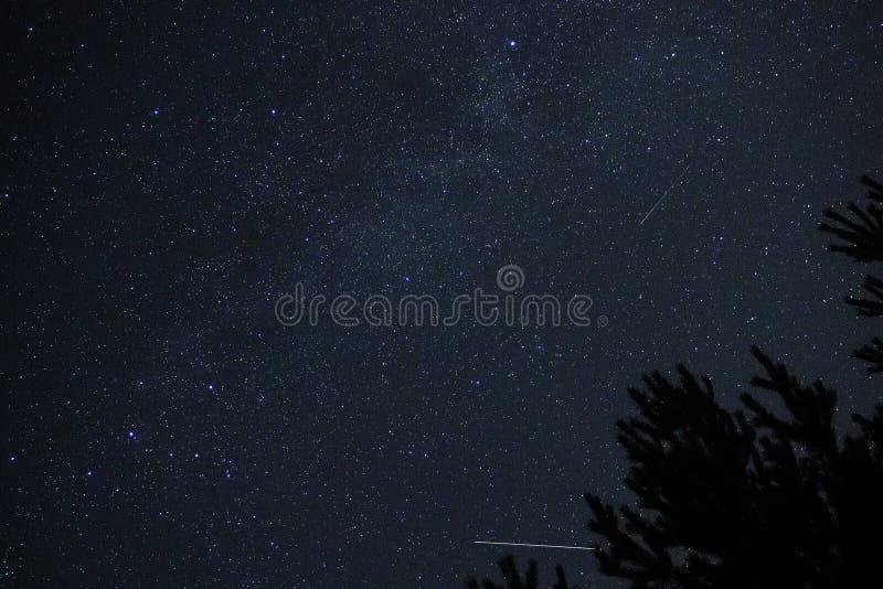 Παρατήρηση αστεριών και μετεωριτών νυχτερινού ουρανού στοκ εικόνες