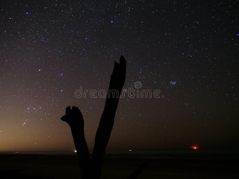 Παρατήρηση αστεριών και φεγγαριών νυχτερινού ουρανού στοκ εικόνα