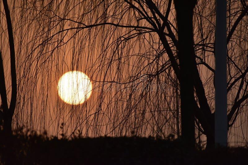 Παρατεταμένο φως του ήλιου ρύθμισης στοκ φωτογραφία με δικαίωμα ελεύθερης χρήσης