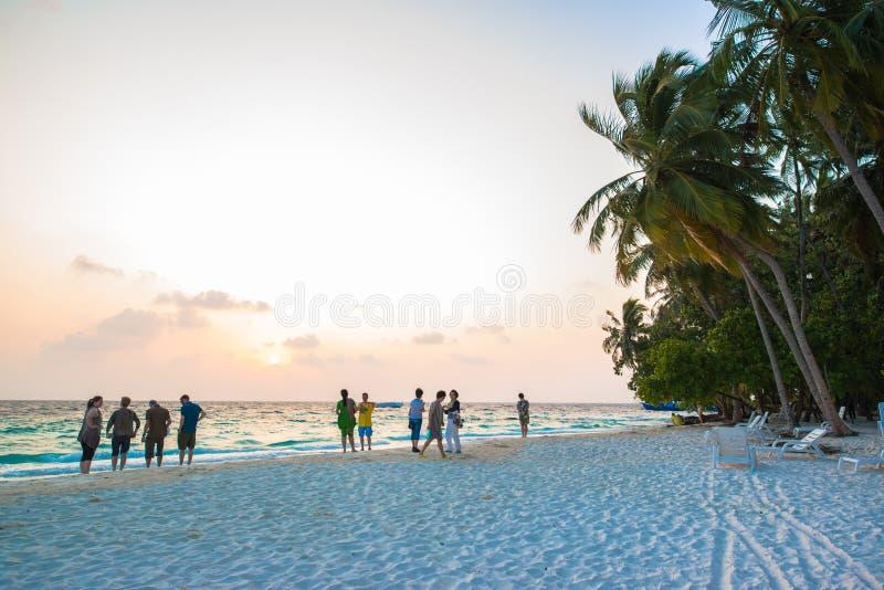 Παραλία άμμου και ωκεάνιο κύμα, Μαλδίβες στοκ εικόνες με δικαίωμα ελεύθερης χρήσης