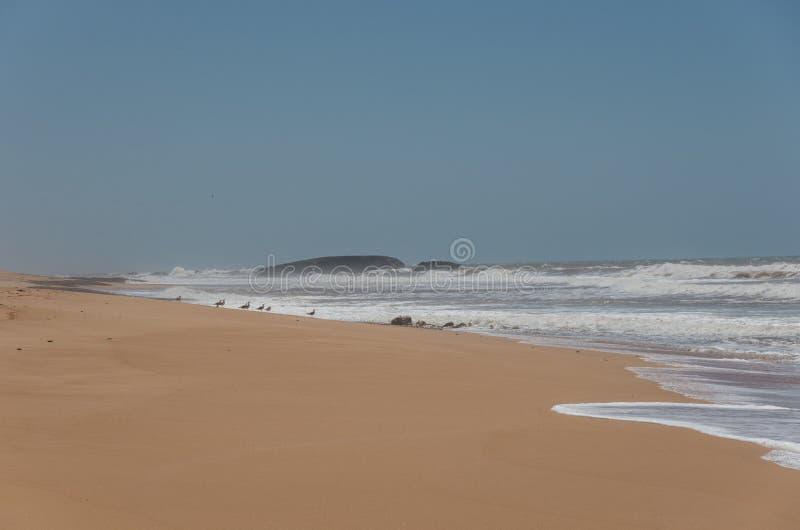 Παραλία άμμου του Ατλαντικού Ωκεανού στο κεντρικό Μαρόκο στοκ εικόνες