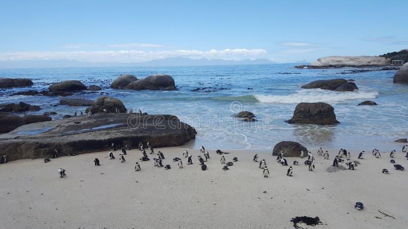 Παραλία λίθων στοκ φωτογραφίες