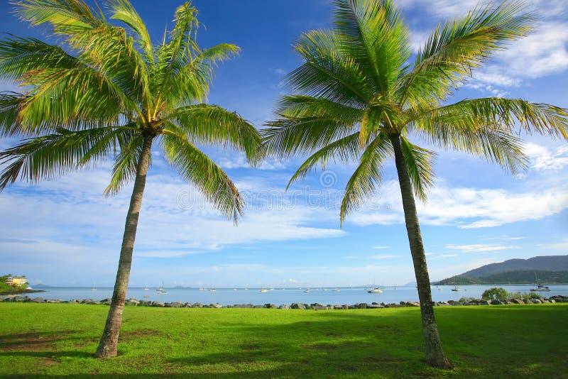 Παραλία Αυστραλία Airlie στοκ εικόνες