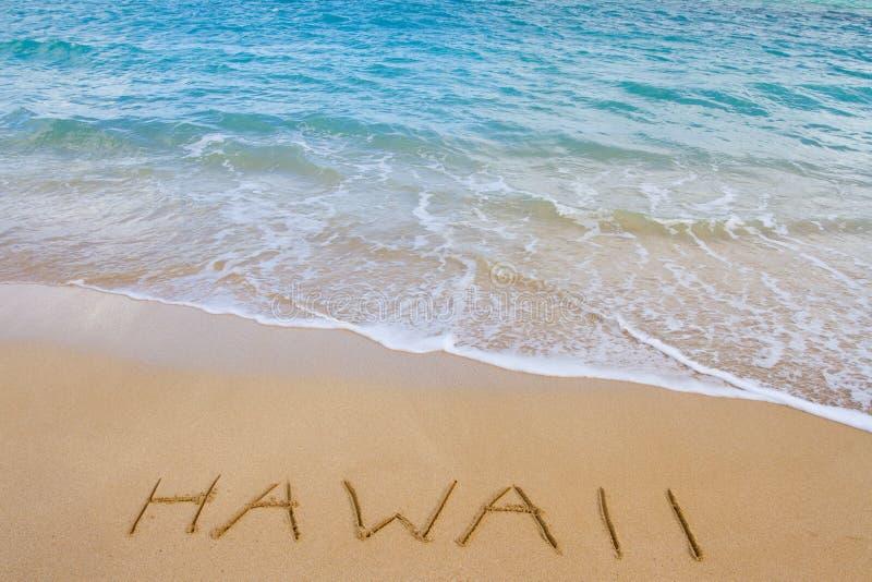 Παραλία και κύματα της Χαβάης στοκ φωτογραφίες