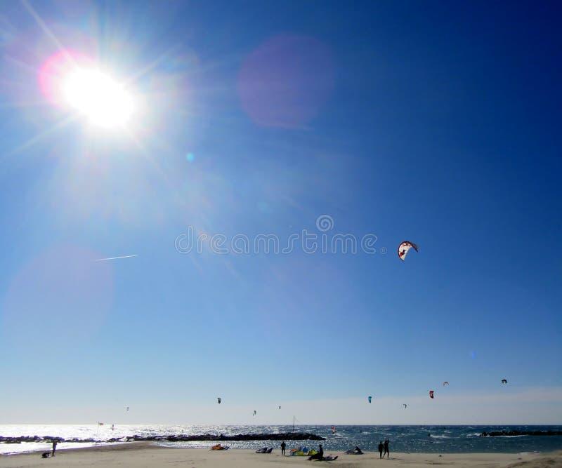 Παραλία και surfers στοκ εικόνες