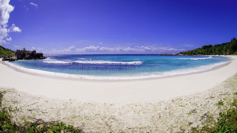 Παραλία κοκοφοινίκων γλυκάνισου, Σεϋχέλλες στοκ εικόνες