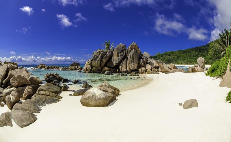 Παραλία κοκοφοινίκων Anse, Σεϋχέλλες 3 στοκ εικόνες με δικαίωμα ελεύθερης χρήσης