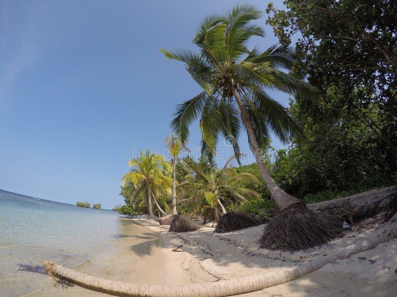 Παραλία πόλο στοκ εικόνα