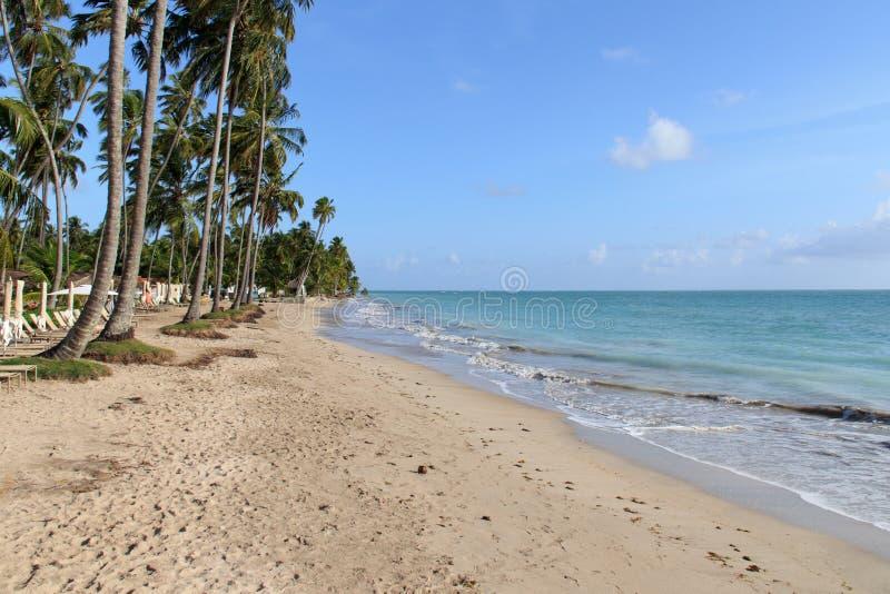 Παραλία σε Maragogi, Alagoas - Βραζιλία στοκ εικόνες με δικαίωμα ελεύθερης χρήσης