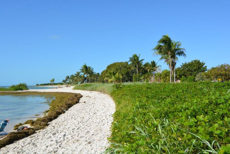 Παραλία σομπρέρο στοκ εικόνα με δικαίωμα ελεύθερης χρήσης