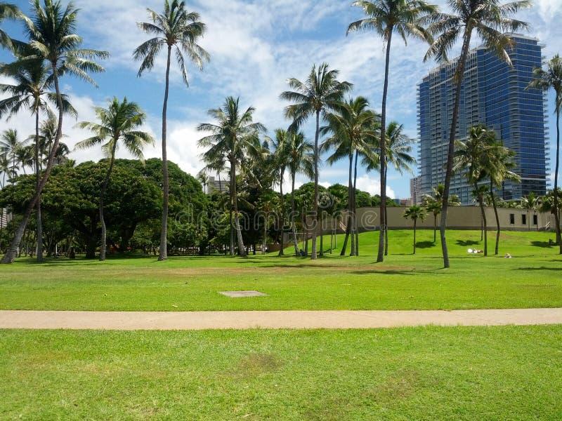 Παραλία στα της Χαβάης νησιά στοκ εικόνα