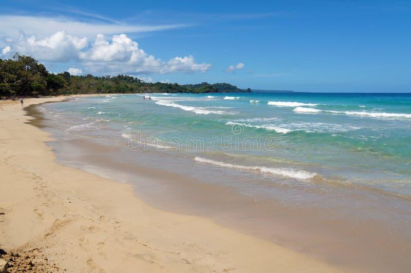 Παραλία στην καραϊβική ακτή του Παναμά στοκ εικόνα με δικαίωμα ελεύθερης χρήσης