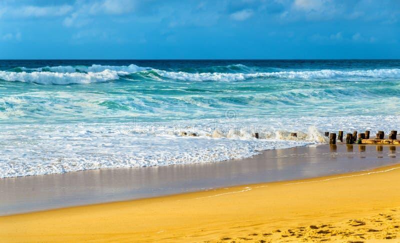 Παραλία στον Ατλαντικό Ωκεανό κοντά σε Seignosse - τη Γαλλία στοκ εικόνες με δικαίωμα ελεύθερης χρήσης
