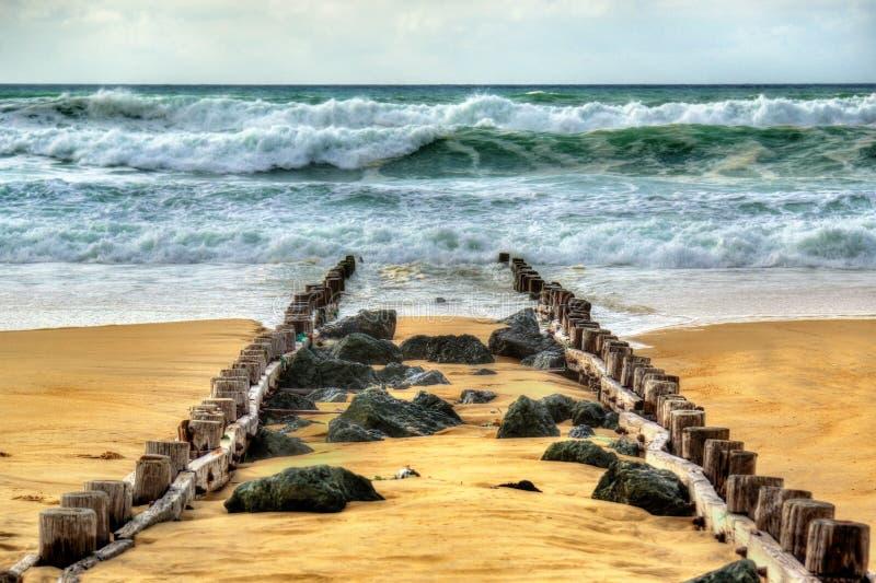 Παραλία στον Ατλαντικό Ωκεανό κοντά σε Seignosse - τη Γαλλία στοκ φωτογραφία με δικαίωμα ελεύθερης χρήσης