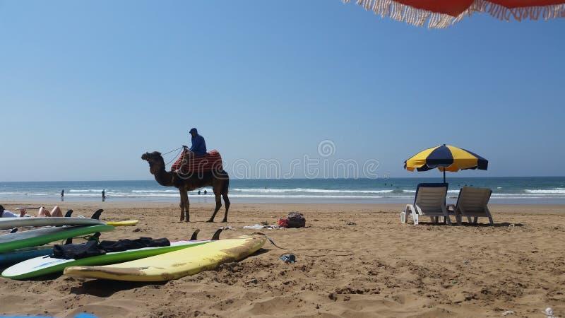 Παραλία στο Μαρόκο στοκ φωτογραφίες με δικαίωμα ελεύθερης χρήσης