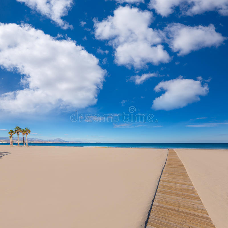 Παραλία της Αλικάντε San Juan με τα δέντρα φοινικών στοκ εικόνα