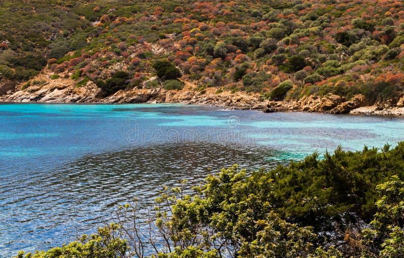 Παραλία της Σαρδηνίας με την μπλε και ανοικτό μπλε θάλασσα, άσπρη άμμος, παράδεισος στοκ εικόνες
