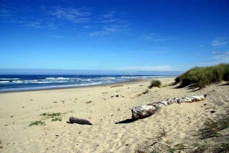 Παραλία του Όρεγκον στοκ φωτογραφία με δικαίωμα ελεύθερης χρήσης