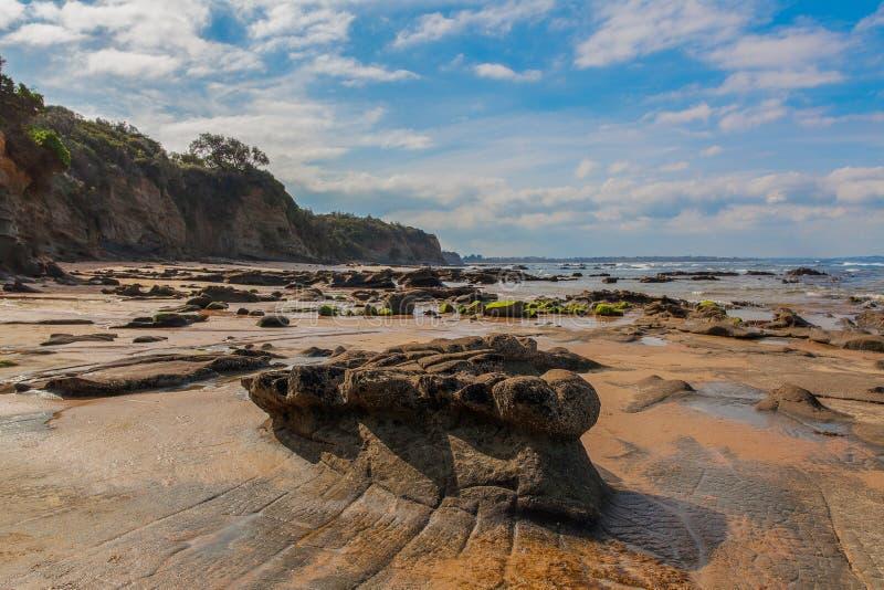 Παραλία φωλιών αετών, Βικτώρια, Αυστραλία στοκ φωτογραφία με δικαίωμα ελεύθερης χρήσης