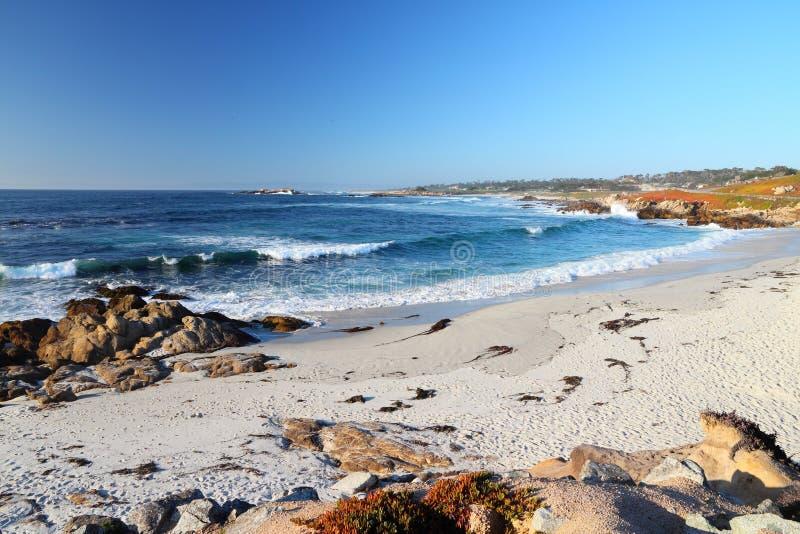 Παραλία χαλικιών, Καλιφόρνια στοκ εικόνα