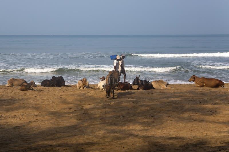 Παραλία Agonda σε Goa, Ινδία στοκ εικόνες