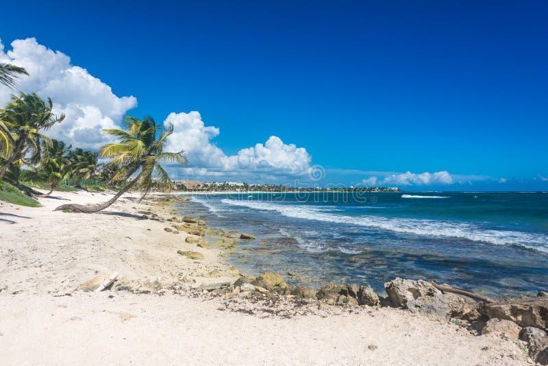 Παραλία Akumal στην καραϊβική θάλασσα, τροπική ακτή κοντά σε Cancun Snork στοκ εικόνα με δικαίωμα ελεύθερης χρήσης