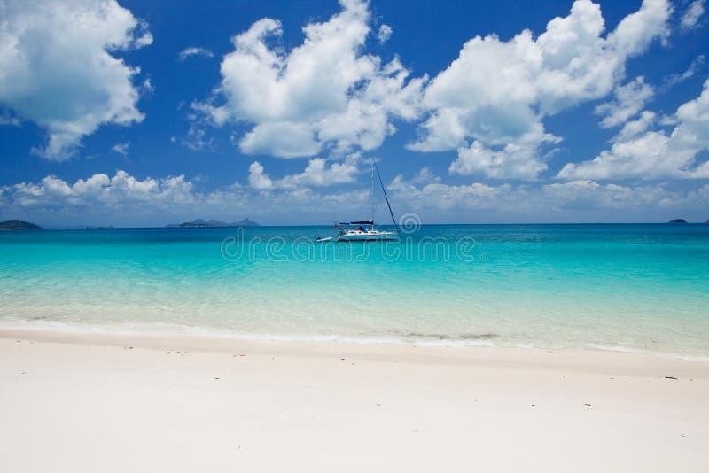 Παραλία Whitehaven στο Whitsundays στοκ φωτογραφίες με δικαίωμα ελεύθερης χρήσης