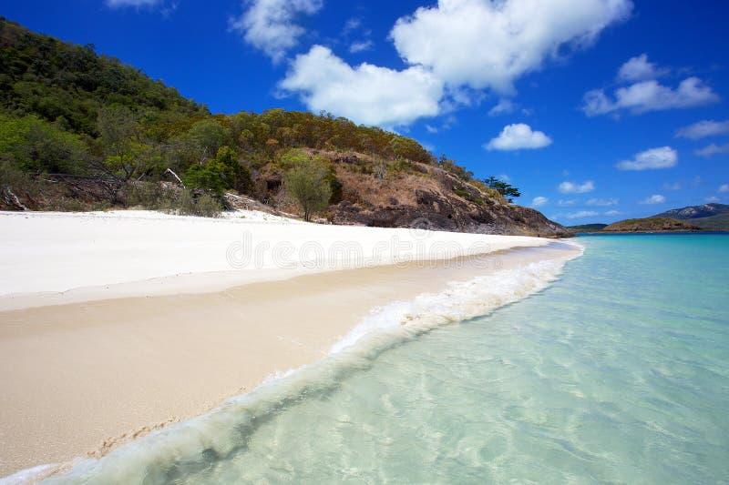 Παραλία Whitsundays Whitehaven στοκ φωτογραφία με δικαίωμα ελεύθερης χρήσης
