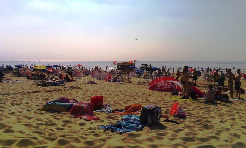 Παραλία Zandvoort aan Zee, Ολλανδία, οι Κάτω Χώρες στοκ εικόνες με δικαίωμα ελεύθερης χρήσης