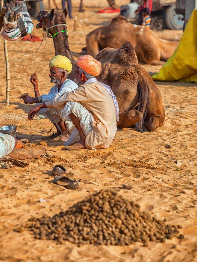 Παραδοσιακή έκθεση σε Pushkar Οι καμήλες για την πώληση βάζουν στην άμμο στοκ εικόνες