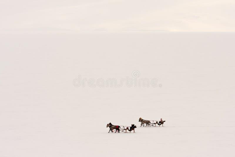 Παραδοσιακή μεταφορά αλόγων με το έλκηθρο στη λίμνη Cildir στοκ εικόνες