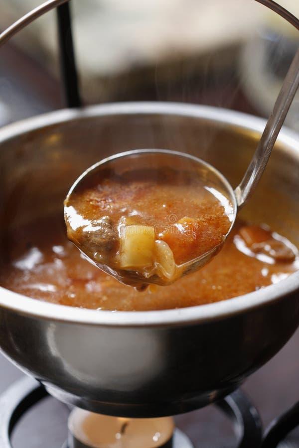 Παραδοσιακή ουγγρική σπιτική καυτή goulash σούπα στοκ εικόνες με δικαίωμα ελεύθερης χρήσης