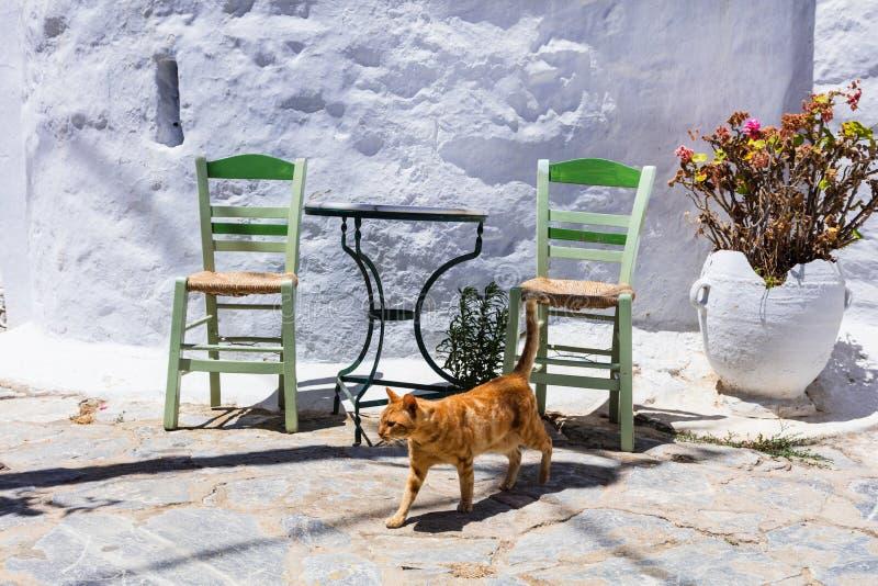 Παραδοσιακή σειρά της Ελλάδας - γάτες και tavernas οδών στοκ φωτογραφίες με δικαίωμα ελεύθερης χρήσης
