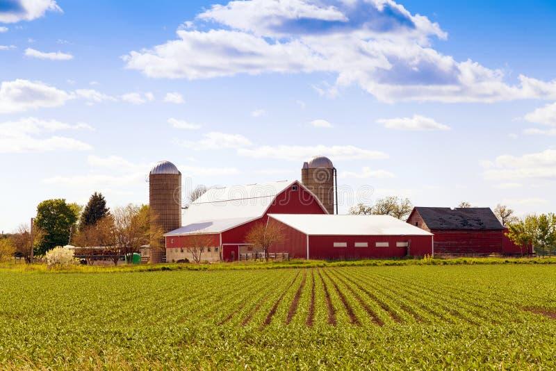 Παραδοσιακό αμερικανικό αγρόκτημα στοκ εικόνα με δικαίωμα ελεύθερης χρήσης