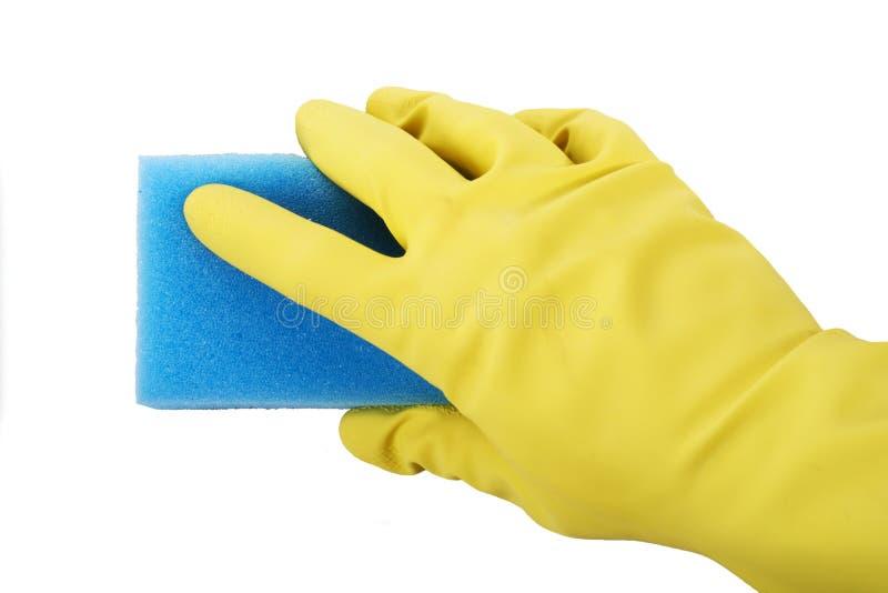 Παραδώστε τα λαστιχένια γάντια κρατώντας το σφουγγάρι στοκ φωτογραφίες με δικαίωμα ελεύθερης χρήσης