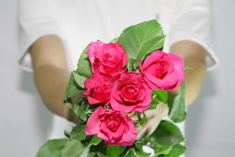 Παραδώστε τα τριαντάφυλλα σε σας στοκ εικόνες με δικαίωμα ελεύθερης χρήσης