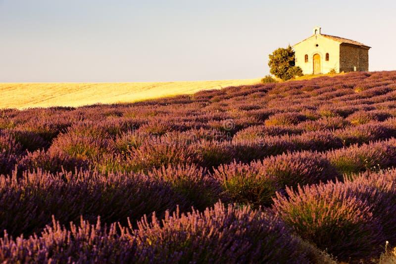 Παρεκκλησι με lavender το πεδίο στοκ εικόνες με δικαίωμα ελεύθερης χρήσης