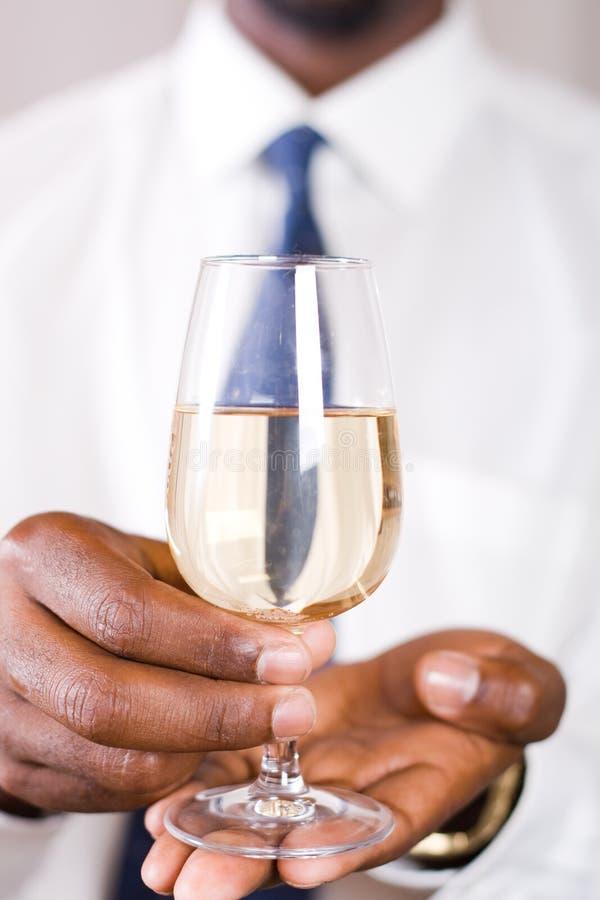 παρουσίαση του κρασιού στοκ εικόνα