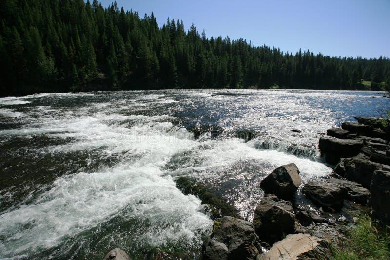 παρόν yellowstone ποταμών στοκ εικόνα με δικαίωμα ελεύθερης χρήσης