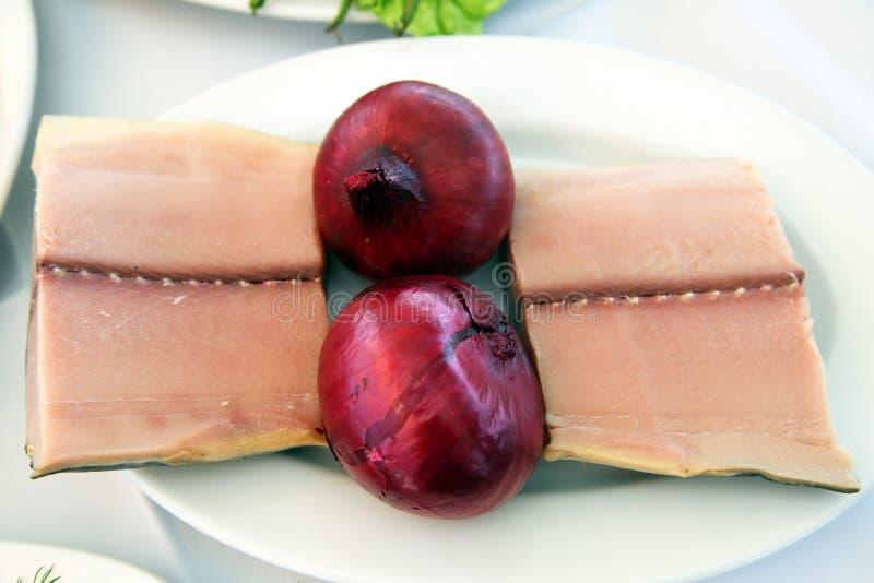 Παστωμένοι τόνοι με το φρέσκο κρεμμύδι στοκ εικόνα