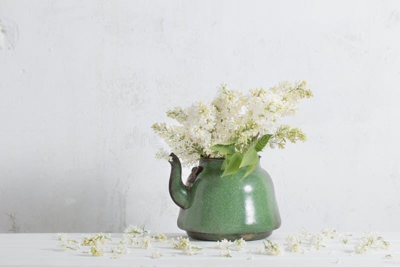Πασχαλιά παλαιό teapot στο άσπρο υπόβαθρο στοκ εικόνες