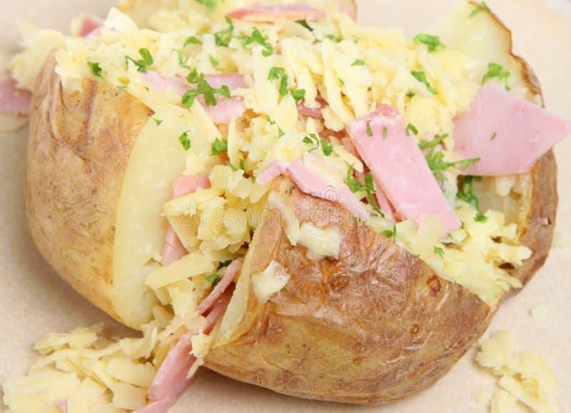 πατάτα σακακιών ζαμπόν τυριώ στοκ εικόνα με δικαίωμα ελεύθερης χρήσης